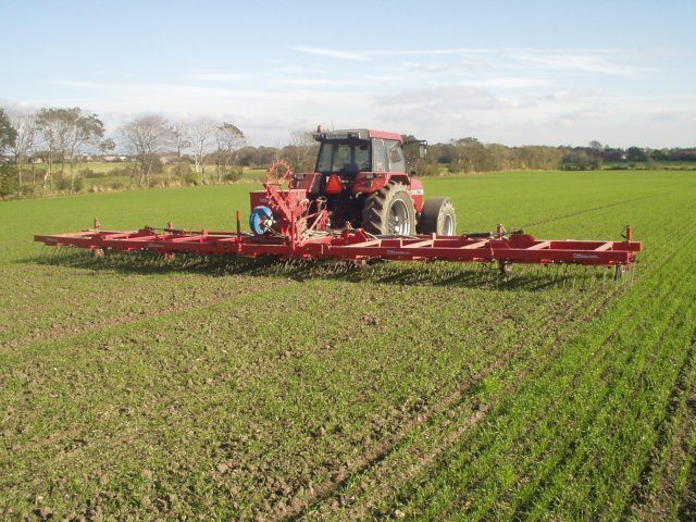 Weed control in spring barley